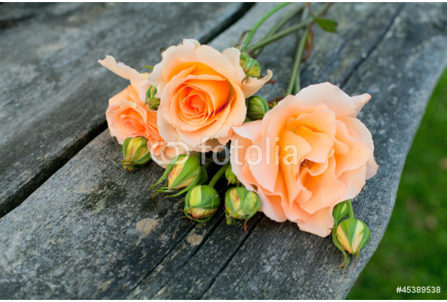 beautiful roses on wooden table in the garden 64239