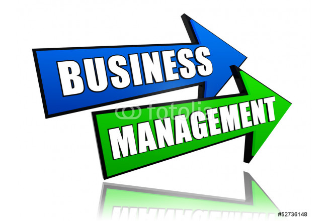 business management in arrows 64239