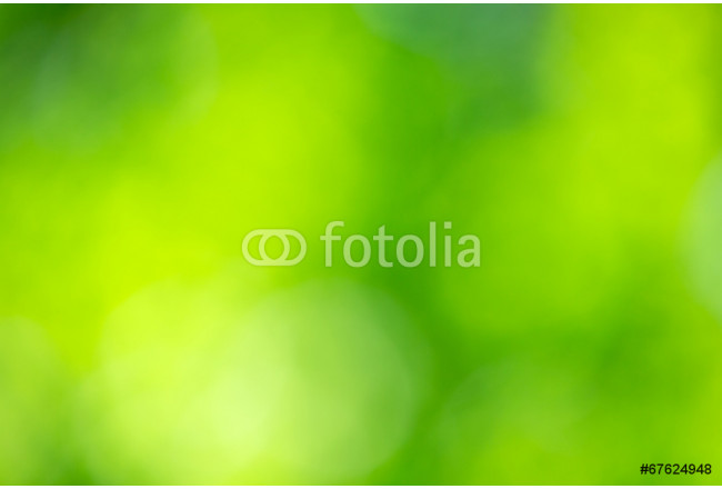 green nature background 64239