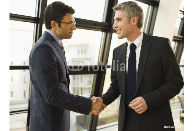Two businessmen shake hands. 64239