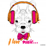 French bulldog wearing headphones. Vector puppy. Hipster. 64239