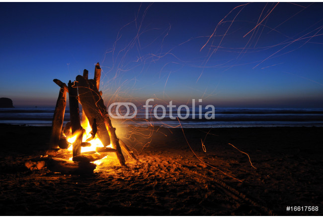 Campfire on shi shi beach in Olympic national park 64239