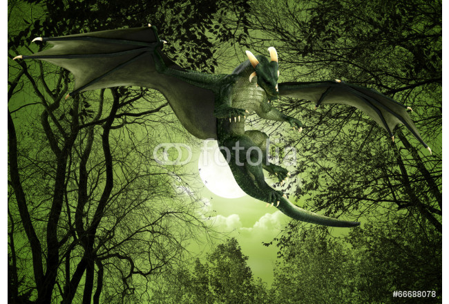 green dragon floating night view 64239