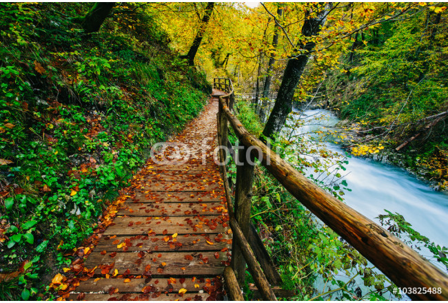 The famous Vintgar Canyon with wooden pats,Bled,Triglav,Slovenia,Europe 64239