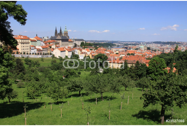 Prague's gothic Castle with flowering trees and green grass 64239