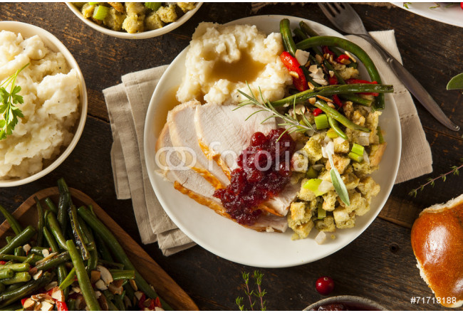 Homemade Thanksgiving Turkey on a Plate 64239