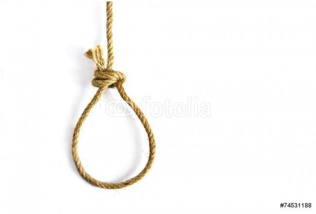 noose on white background 64239