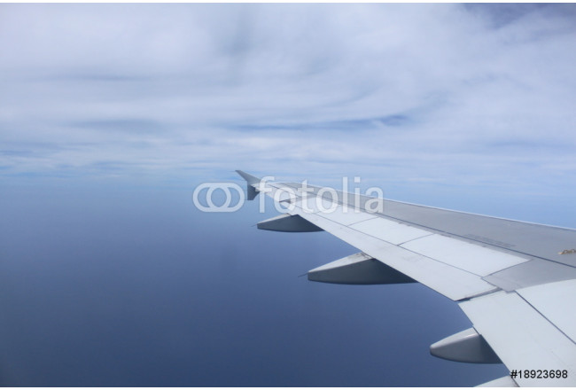 Airplane wing 64239