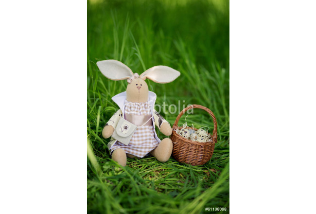 Easter bunny with eggs 64239