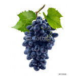 Blue grapes bunch isolated on white background 64239