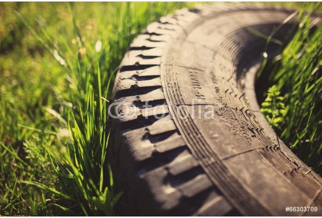 Toile déco Old tire in grass, tinted photo 64239