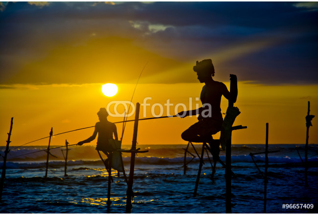 Silhouettes of the traditional fishermen at the sunset near Galle in Sri Lanka. 64239