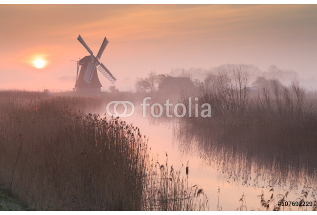 Foggy, pink sunrise in Holland with a traditional windmill in the wetlands. 64239