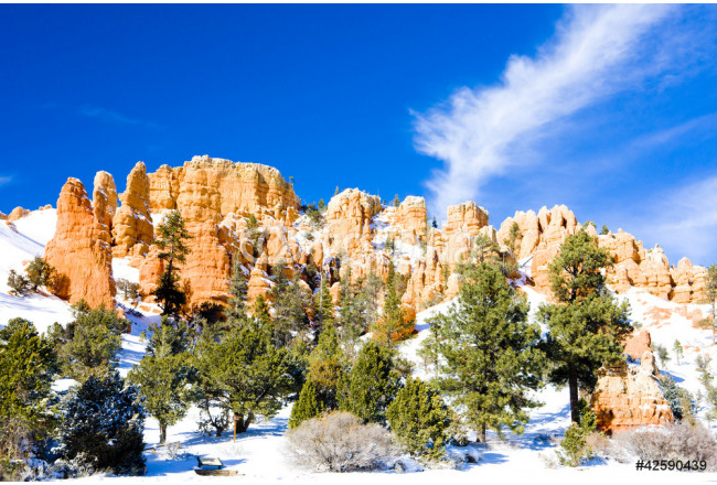 Bryce Canyon National Park in winter, Utah, USA 64239