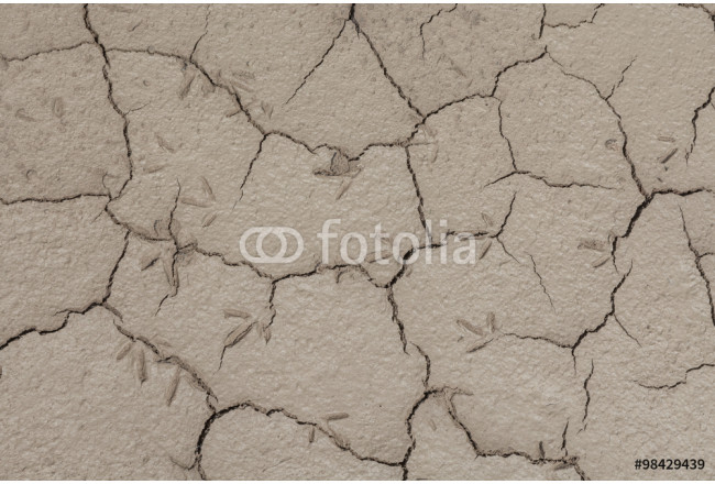 Toile déco Footprints in the soil drought cracked texture 64239