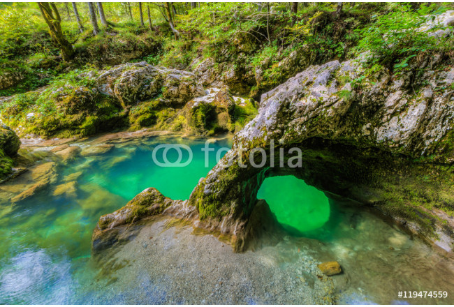 "The canyon Mostnica (Mostnice Korita) with crystal clear water and a rock called ""elephant (Slon?ek) in Triglav national park, Slovenia 64239"