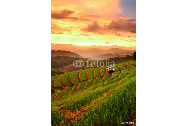 Bild auf Leinwand Rice Terraces with sunset backdrop at Ban Papongpieng Chiangmai 64239