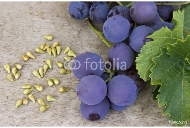 Grapes and grape seed on a wooden table 64239