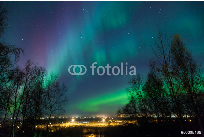 Northern Lights over City 64239
