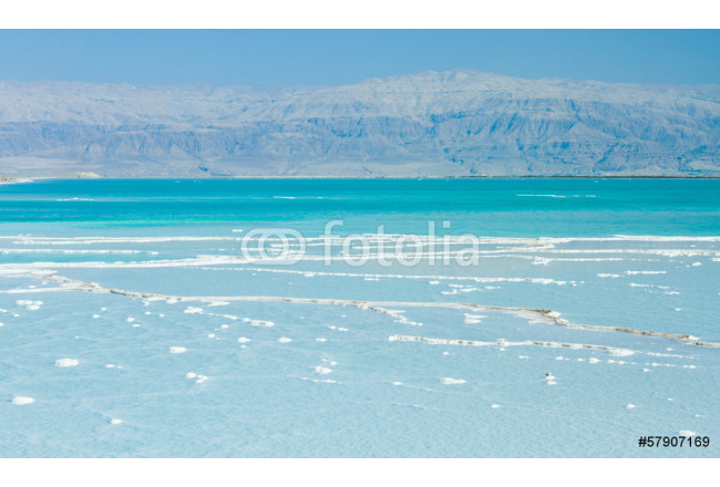 beautiful coast of the Dead Sea 64239