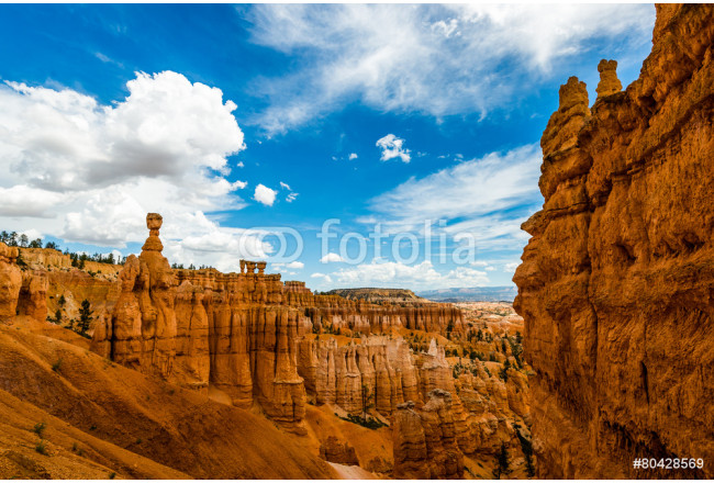 Bryce Canyon National Park 64239