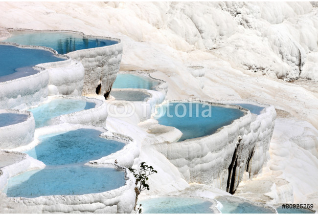 Natural travertine pools and terraces, Pamukkale, Turkey 64239