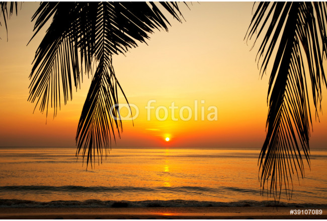 Tropical beach at sunset. 64239