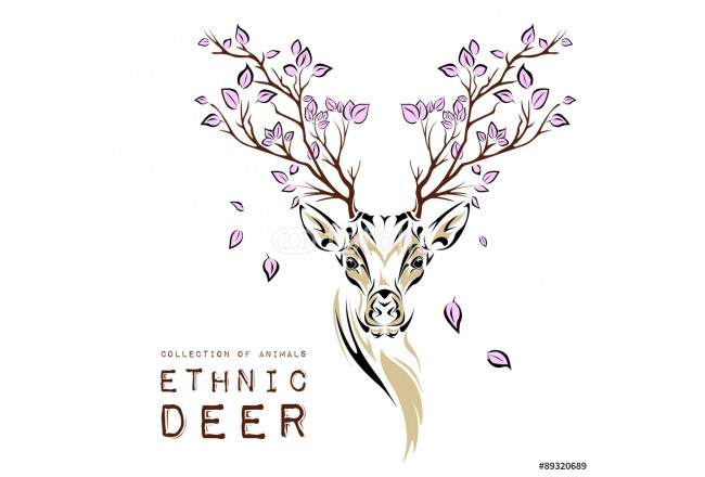 Painting Ethnic colored head of deer with branches on the horns. totem / tattoo design. Use for print, posters, t-shirts. Vector illustration 64239