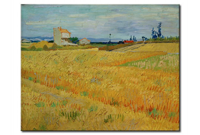 Art Reproduction Wheat Field 52359